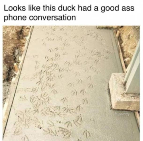 Random Funny Pictures, part 15