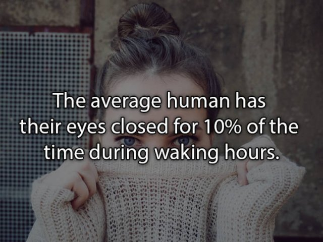 Real Life Facts That Will Be Interesting For You