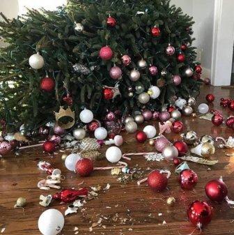Christmas Fails