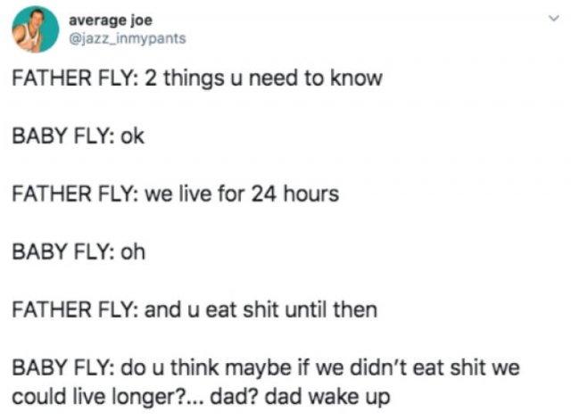 Funny Tweets, part 22