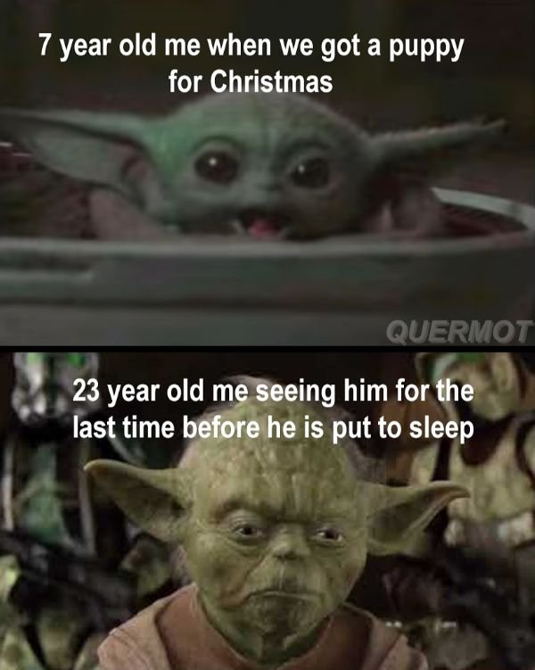 Random Funny Memes, part 15