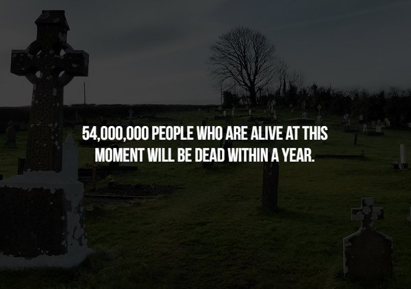 Scary Facts, part 49