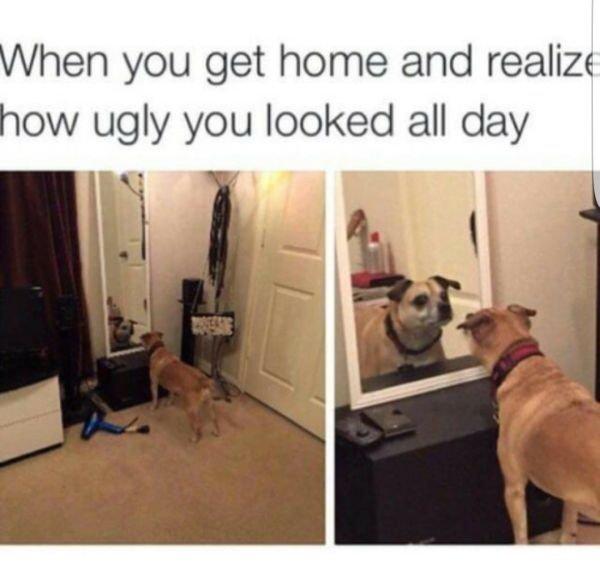 Everyday Fails