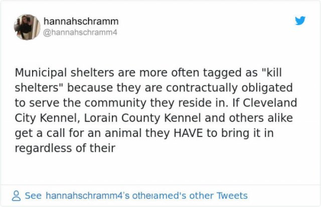The Difference Between Shelters