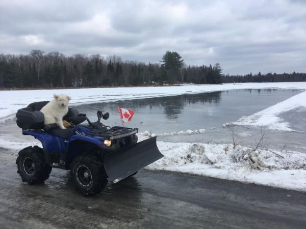 Only In Canada, part 9