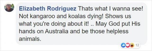 Internet Responds On Vegetable Campaign For Starving Australian Animals