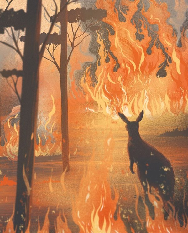 Australian Bushfires: Artists Share Support By Their Works