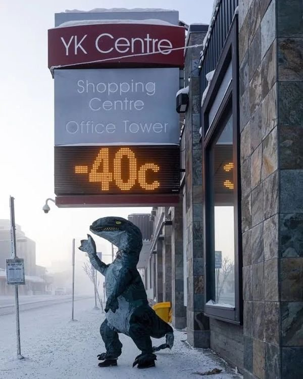 Only In Canada, part 11