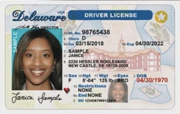 Driver's Licenses In Every U.S. State