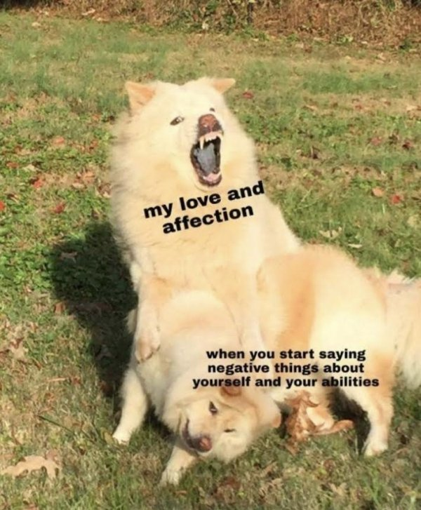 Relationship Memes, part 2