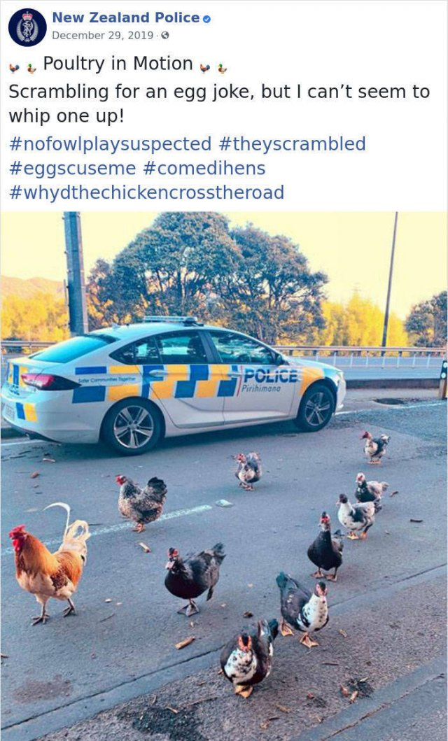 New Zealand Police Knows How To Facebook
