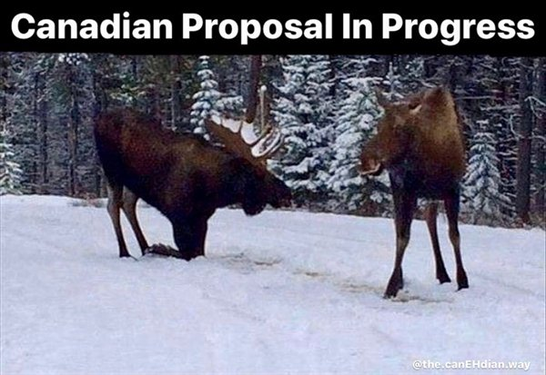 Only In Canada, part 13