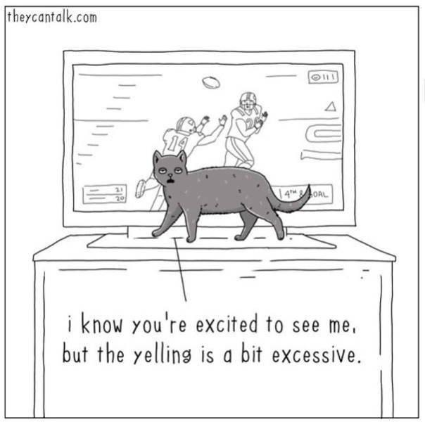 Animal Comics By Jimmy Craig
