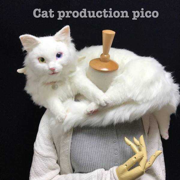 Cat Bags By Pico Miho