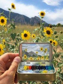 Mini Plein Air Paintings By Remington Robinson