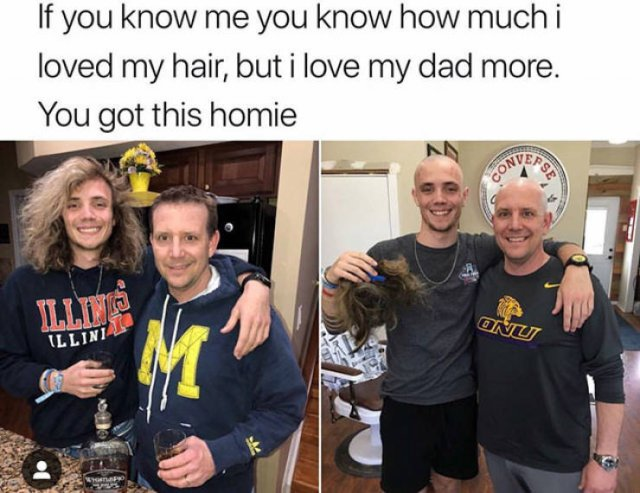Pictures Full Of Wholesomeness