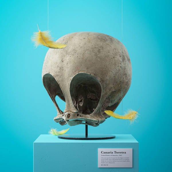 Fossil Skulls Of Popular Cartoon Characters By Filip Hodas
