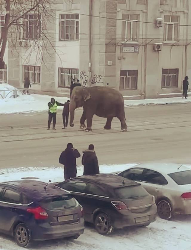 Only In Russia, part 50