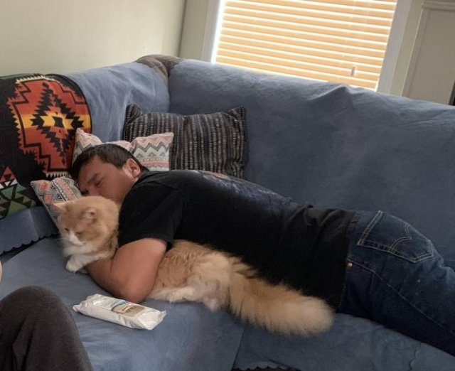 Men Who Didn't Want To Have Pets