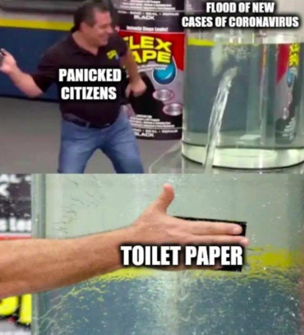 Toilet Paper Memes
