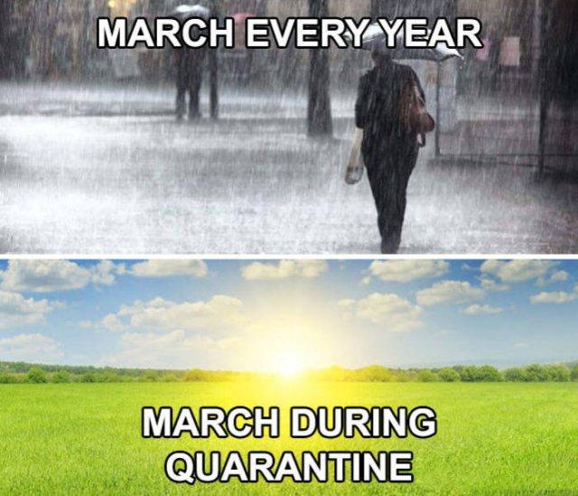 Quarantine Humor | Fun