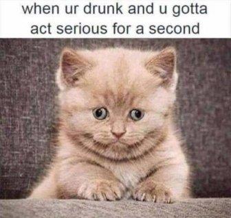 Alcohol Photos