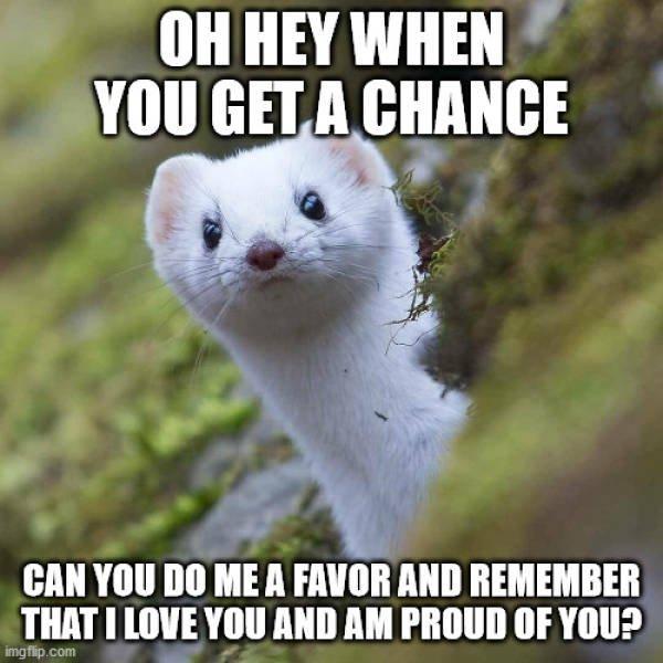 Wholesome Memes, part 9
