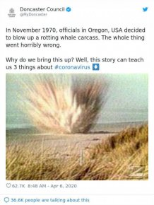 A True Story About Exploded Whale That Can Teach Us Some Coronavirus Lessons