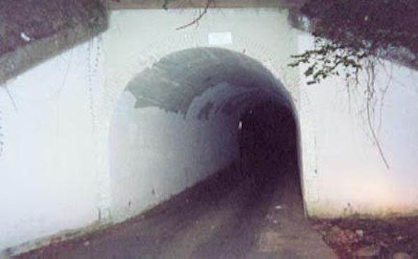 Wikipedia Rabbit Holes