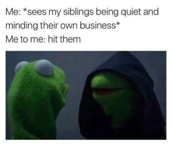Sibling Memes