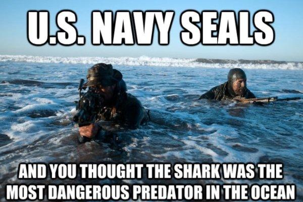 Military Humor, part 2