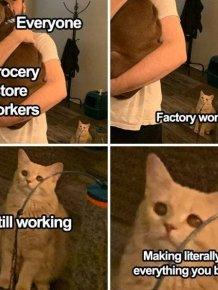 Essential Workers Memes