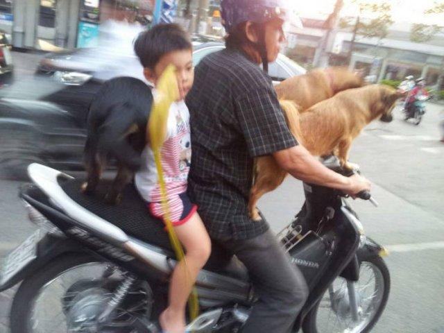 Weird Asia, part 2