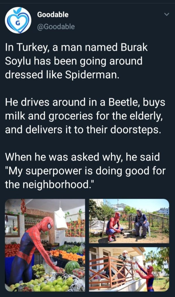 Wholesome Pictures, part 2