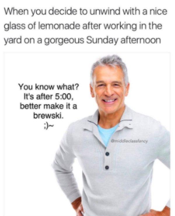 """""""Middle Class Fancy"""" Memes, part 2"""