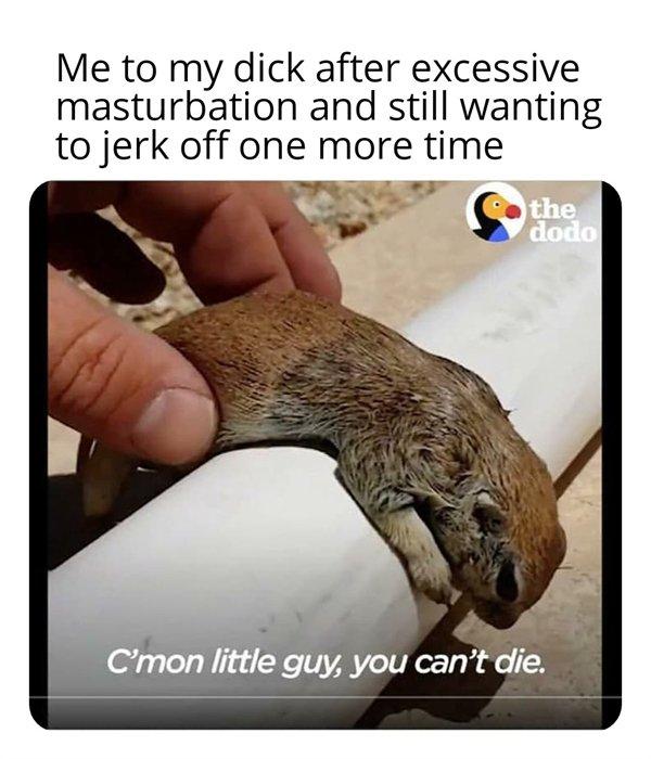 Random Funny Memes, part 45