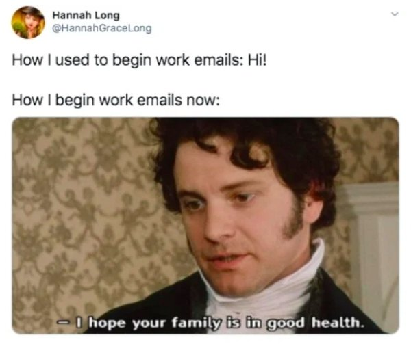 Working From Home Memes