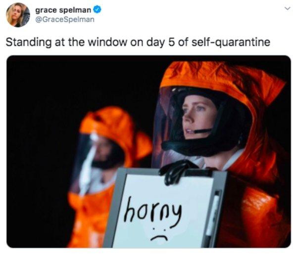Quarantine Memes, part 3