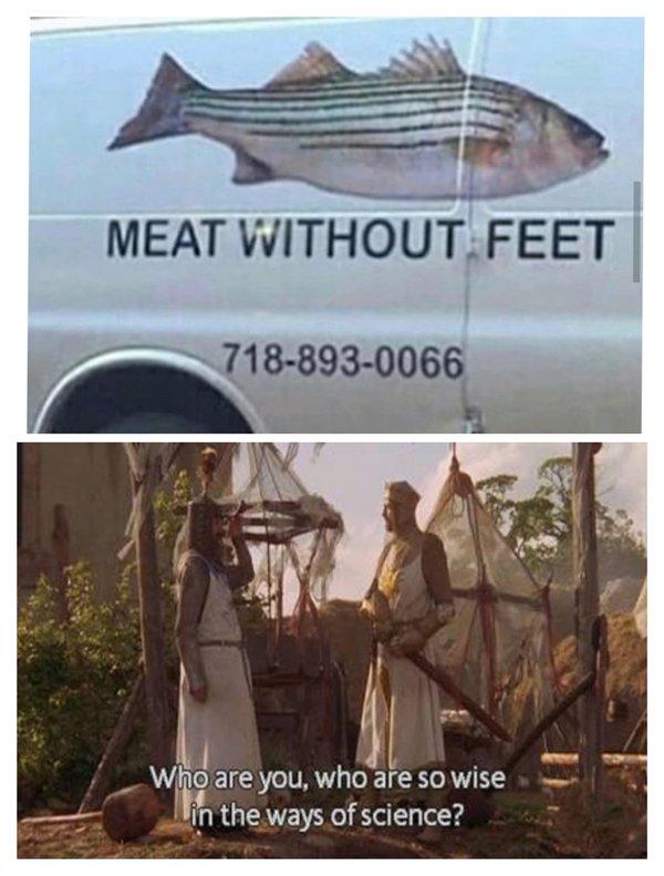 Hilarious Memes, part 3