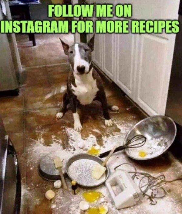 Hilarious Memes, part 4