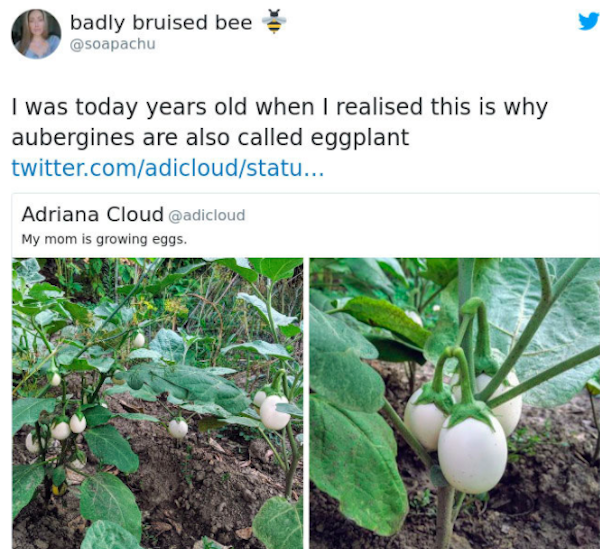 We Didn't Know About These Things