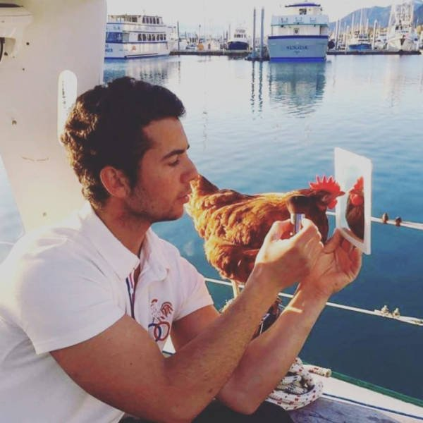 This Guy Travels Around World With His Pet Chicken