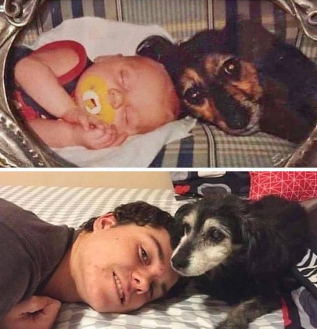 People Recreate Their Old Photos