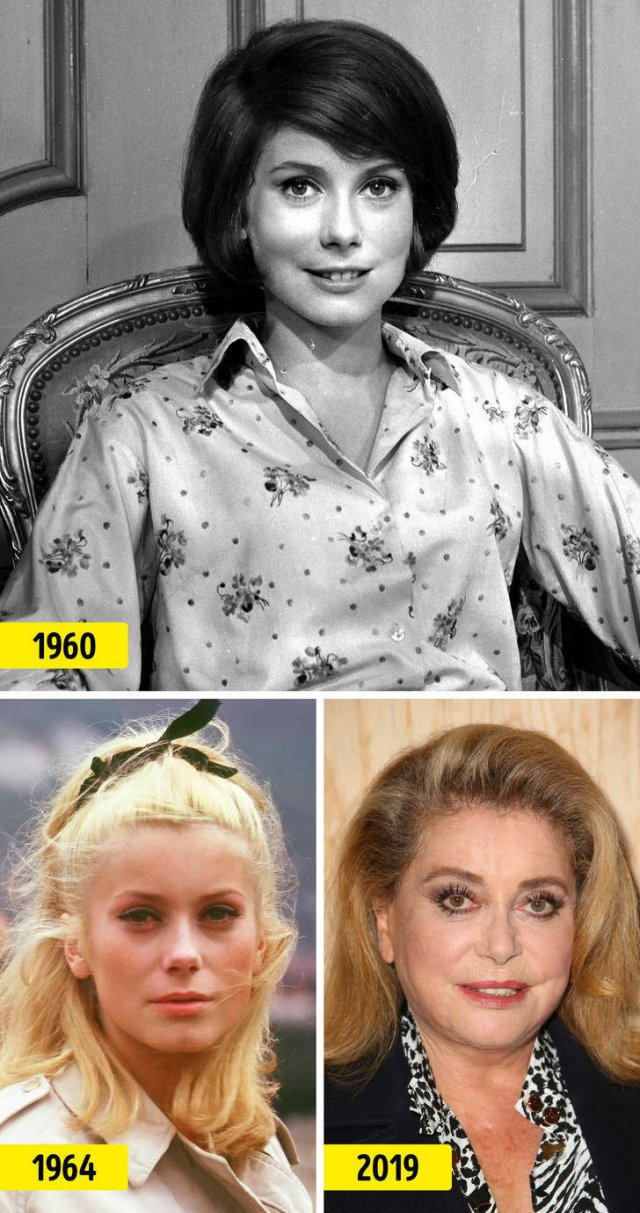 Celebrities In Their Prime