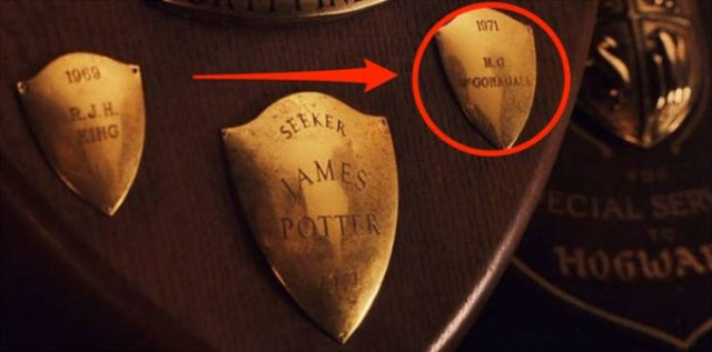 Easter Eggs In Harry Potter Movies