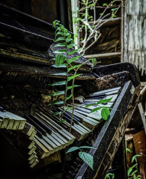 Abandoned Places, part 6