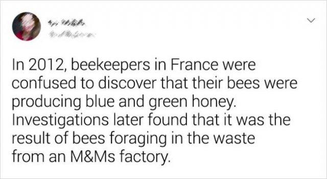 Random Facts, part 9