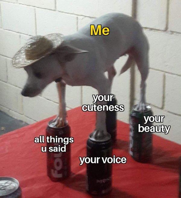 Flirtatious Memes, part 6
