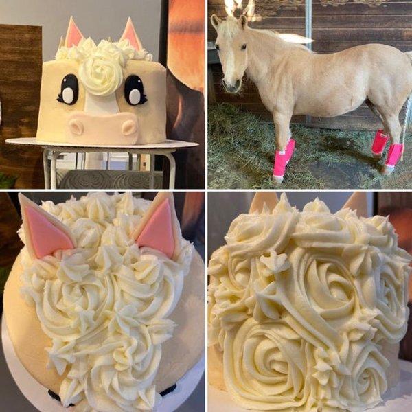 Amateur Baking Masterpieces