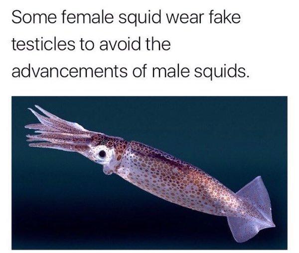 Only Women Will Understand, part 6
